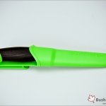 mora companion color green 0004