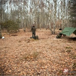 20121119 pb forest 0002
